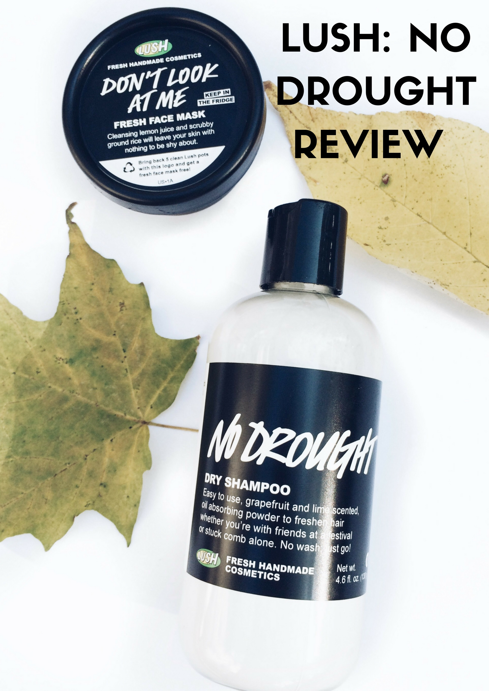 lush-no-drought-review