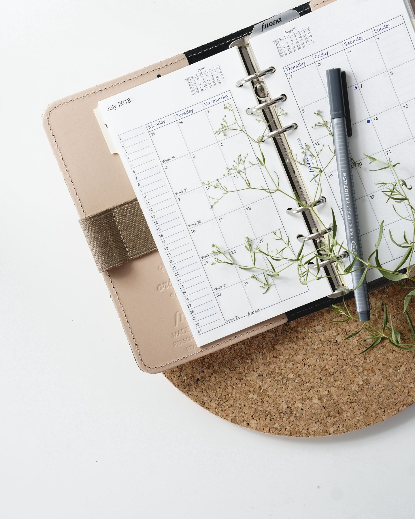 Routine For A Productive New Month